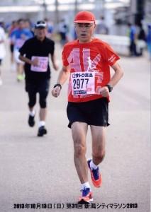 2013新潟マラソン